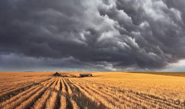 risks-farm-storm-web